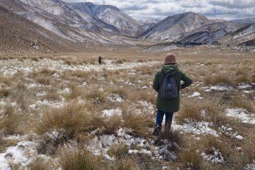 2/7 最新武漢肺炎影響 紐西蘭旅遊資訊 – 2月10日中港澳轉機回台需居家檢疫